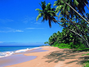 Goa-beach-Palolem