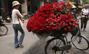 roses_of_vietnam