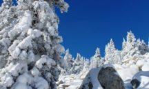 Зюраткуль 8 декабря ‼ Друзья!!! 💕 Приглашаем всех желающих прикоснуться к белому пушистому снегу и почувствовать дыхание ЗИМНЕЙ СКАЗКИ!!!🌀
