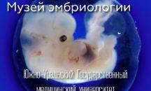 Экскурсия для школьников в Музей эмбриологии в г.Челябинск