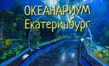 "25 октября - Океанариум ""Дельфин "" г.Екатеринбург"