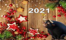 Новый год в Сочи!
