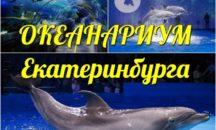 "24.07 - ОКЕАНАРИУМ ""ДЕЛЬФИН"", г. Екатеринбург"