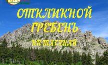 11.09 - ОТКЛИКНОЙ ГРЕБЕНЬ