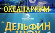 "04.11 - ОКЕАНАРИУМ ""ДЕЛЬФИН"", г. Екатеринбург"