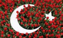 Туры в Турцию на 8 марта!